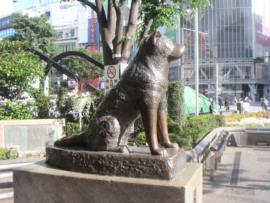 Hachiko-A-Dog-s-Story-hachiko-a-dogs-story-14893697-2048-1536